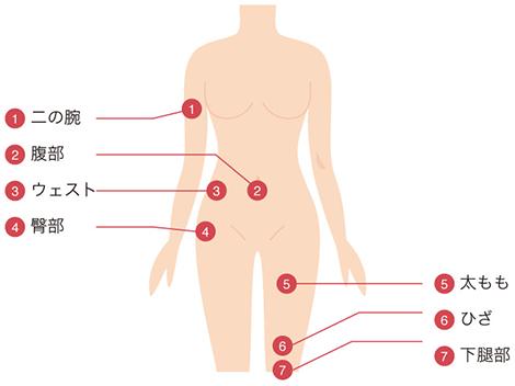 BNLS注射の適用部位 体